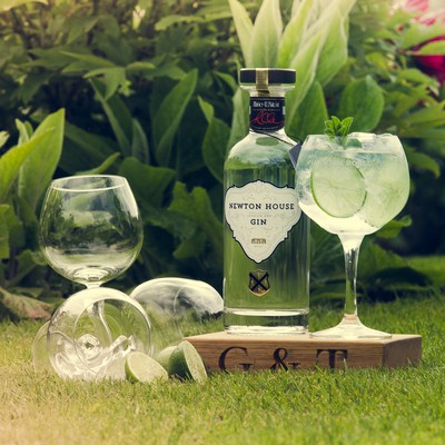 Somerset Gin from Newton House