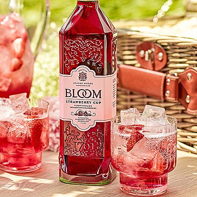 producing outstanding gins since 1761