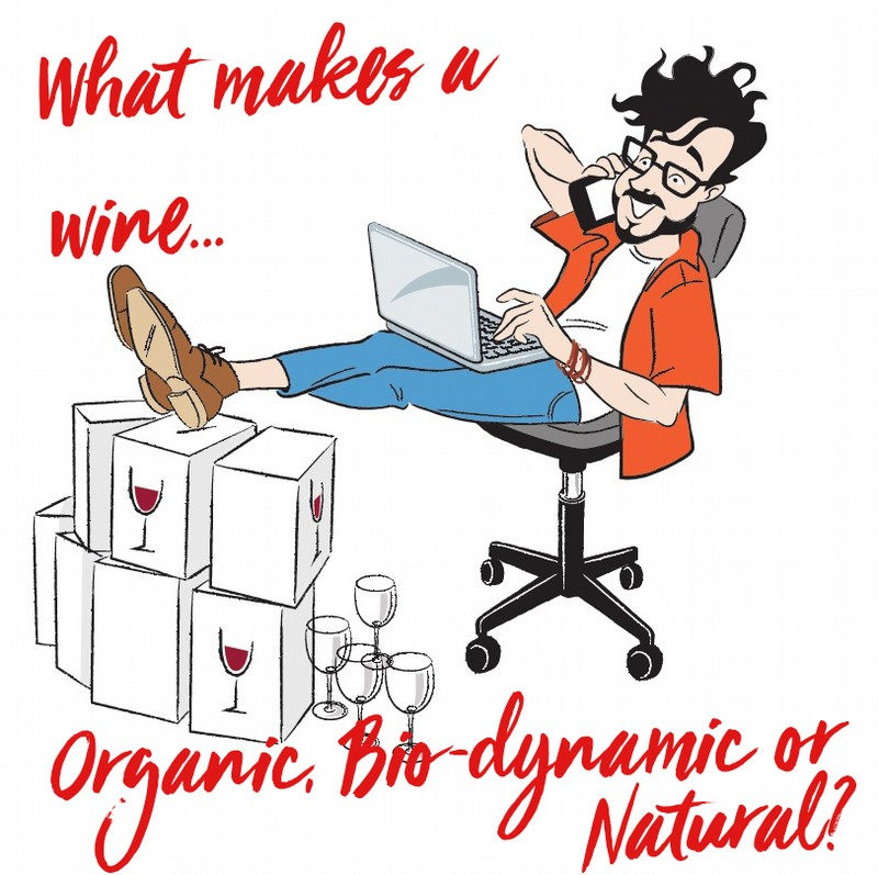 What makes a wine Organic, Bio-dynamic or Natural?