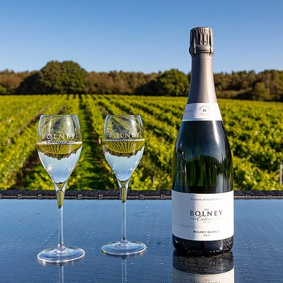 One of the Longest Established English Vineyards