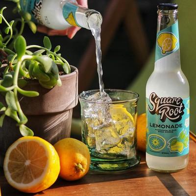 Square Root's Lemonade Is The Bee's Knees!