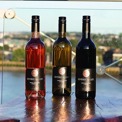 Severn Valley: Outstanding English Wines Made From Weather-Hardy Grapes