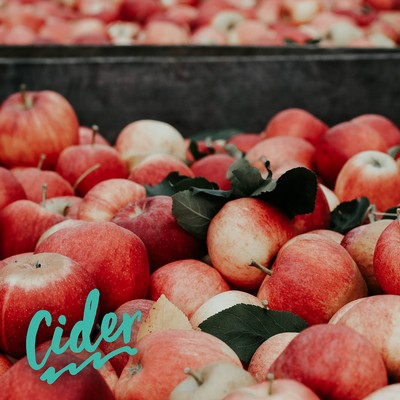 It's time to explore Bag-In-Box ciders