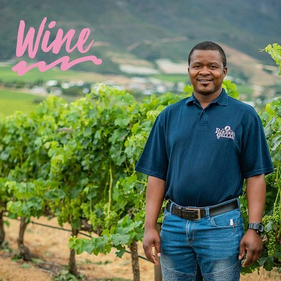 Say hello to Riebeek Valley Wine Co. The guardians of Swartland!