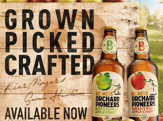 Orchard Pioneers