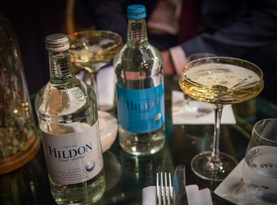 Hildon Water 33cl