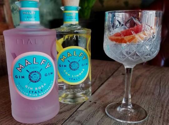 Jawbox Gin & Malfy Gins